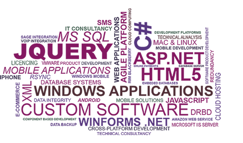 Custom Software Technologies