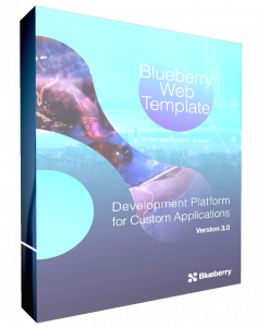 Rapid Web Development Blueberry Consultants